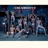 The Dreamboys Fit & Famous Tour 2014