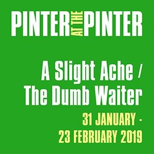 The Dumb Waiter / A Slight Ache