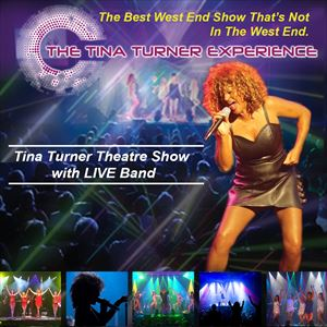 The Tina Turner Experience UK Tour
