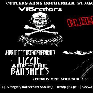 THE VIBRATORS LIZZY & THE BANSHEES ELROACHO