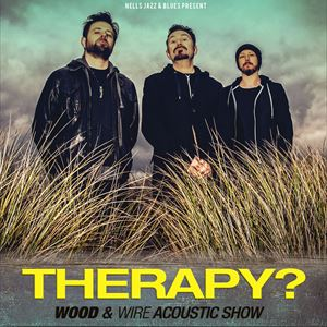 Therapy? Wood and Wire Acoustic Show