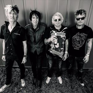 UK SUBS plus support