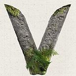 Wild Worlds: V