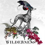 Wilderness 2013