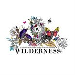 Wilderness 2015