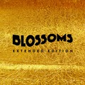Blossoms - extended edition