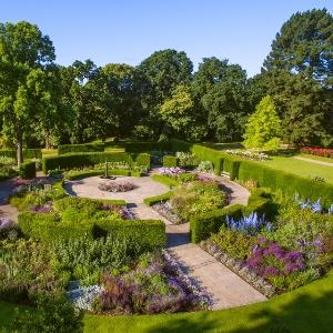 Alice in Wonderland - The Savill Garden