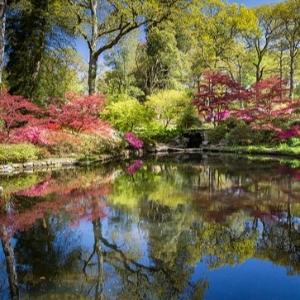 Alice's Adventures in Wonderland - Exbury Gardens