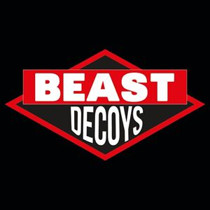 Beast Decoys - tribute to Beastie Boys