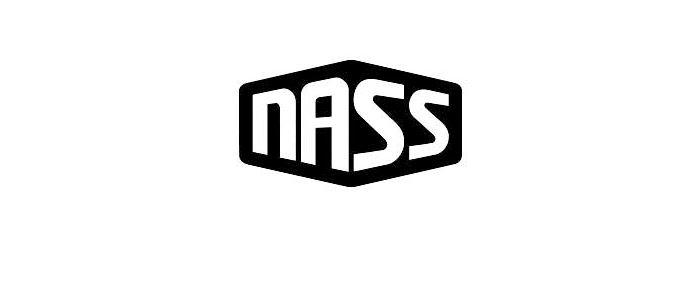 Nass Festival 2015