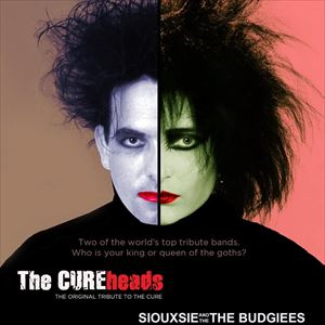 The Cureheads/Siouxie and the Budgiees
