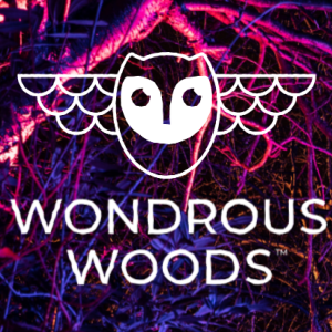 Wondrous Woods