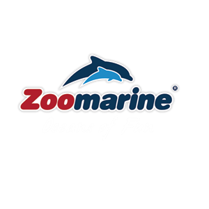 Zoomarine Oceans Of Fun - Dolphin Emotions