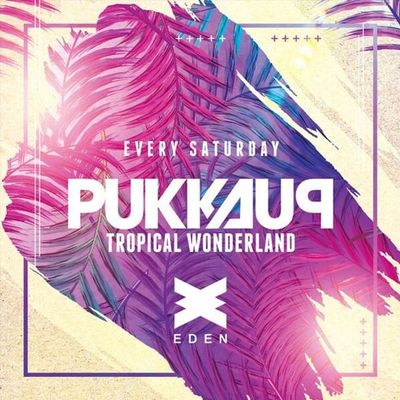 Pukka Up Tropical Wonderland