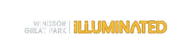 Windsor Illuminated